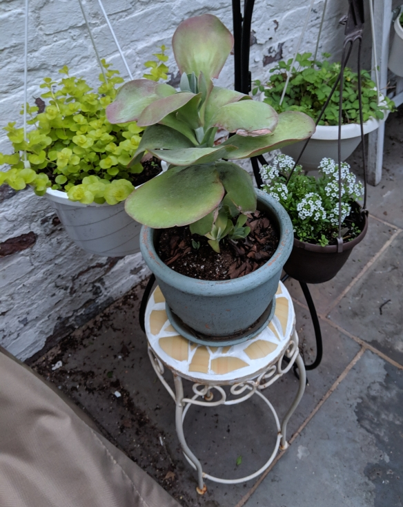 Restored Plant Stand